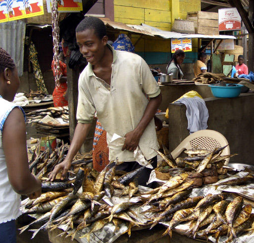 My Funny Experience With A Ghanaian Fish Seller Drmerz