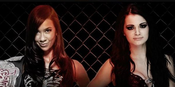 aj lee vs paige hell in a cell