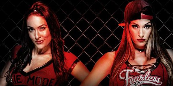 brie bella vs nikki bella hell in a cell